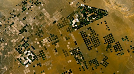 Landwirtschaft in der Wüste von Saudiarabien.